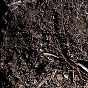 rough compost